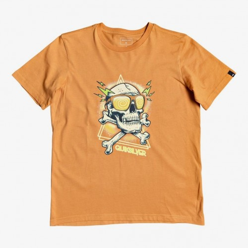 Quiksilver Hell Revival Tee Yth Apricot Buff