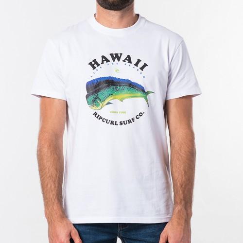 Camiseta Rip Curl Destination Surf Tee Optical White