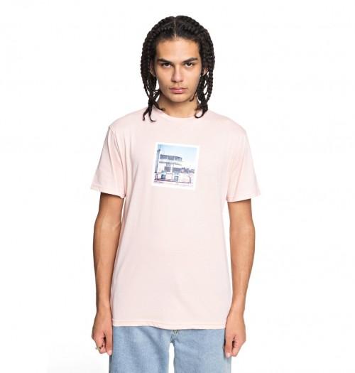 Camiseta DC Viajero English Rose